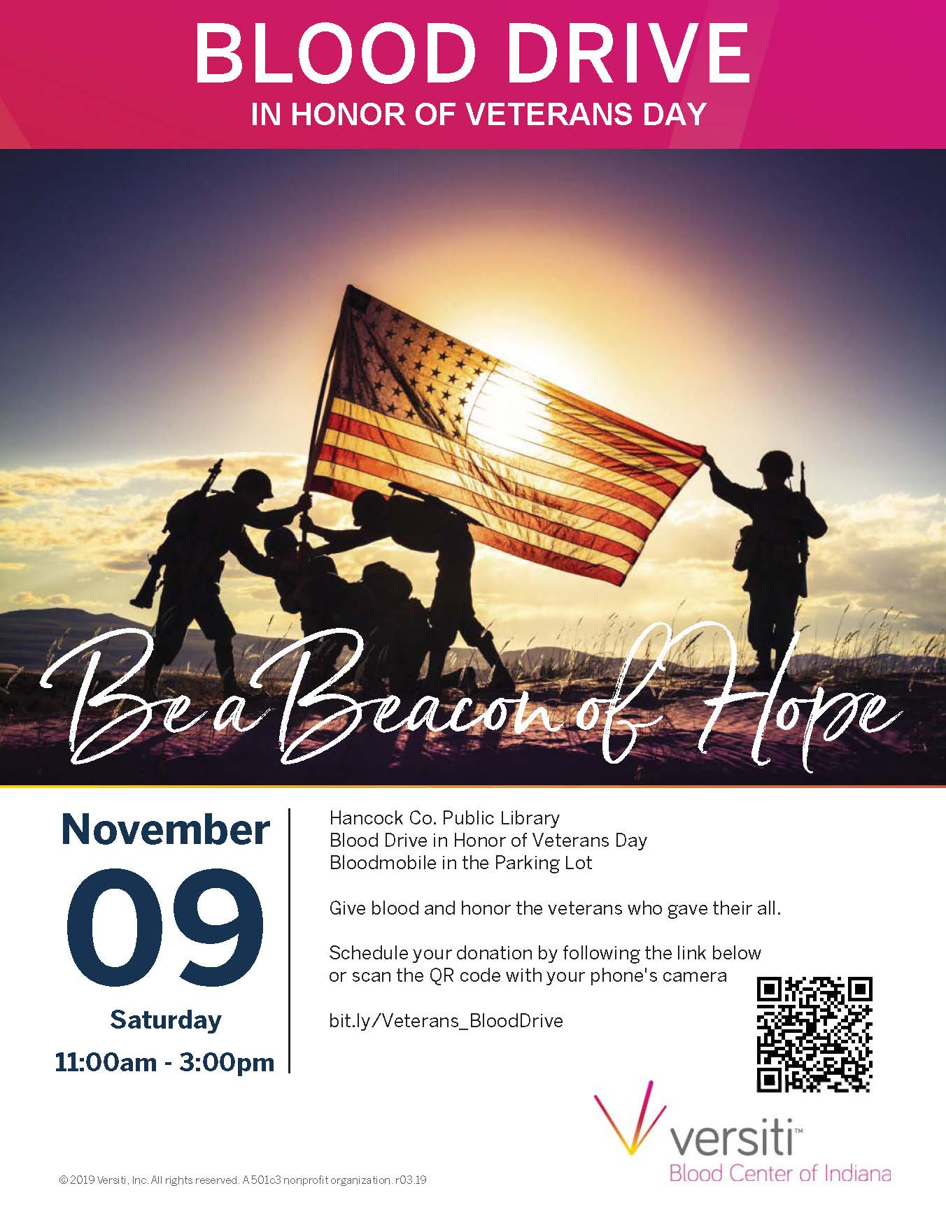Military Veteran's Day Blood Drive at the Library