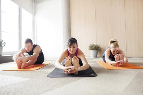 Yoga at the New Palestine Library